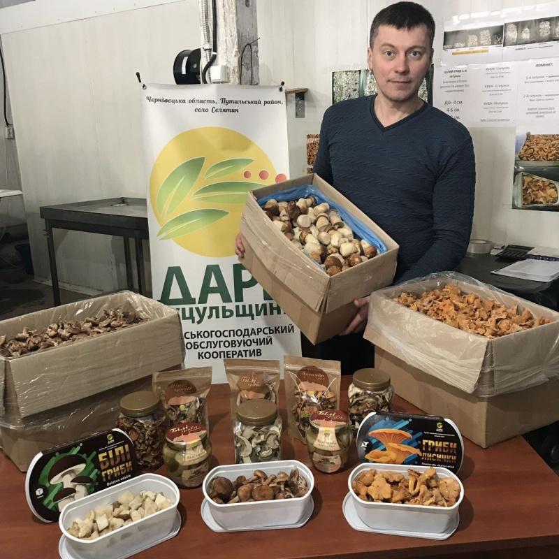 Кооператив з Буковини експортує гриби в США та Ізраїль