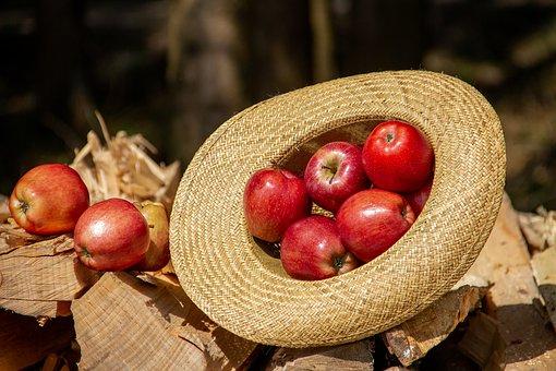 ДУМКА: Переробники безпідставно знизили вдесятеро ціну яблук