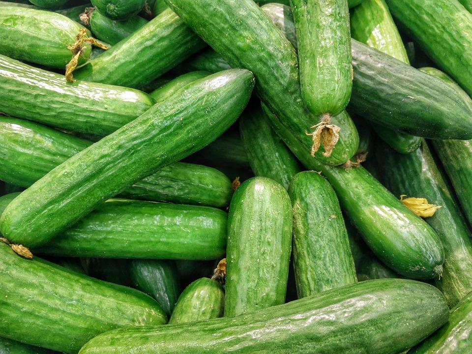 В Україні ціна на огірки почала знижуватись