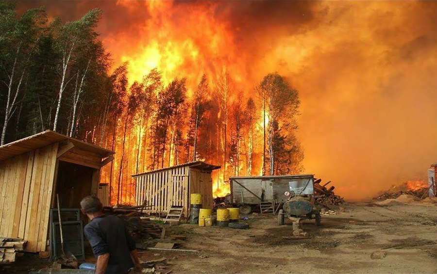 Ліси у вогні: наскільки готова Україна до боротьби з пожежами?