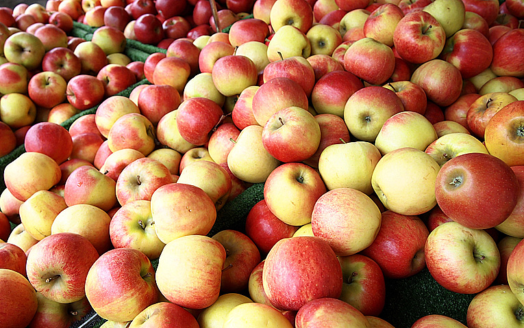 Картинки по запросу яблука