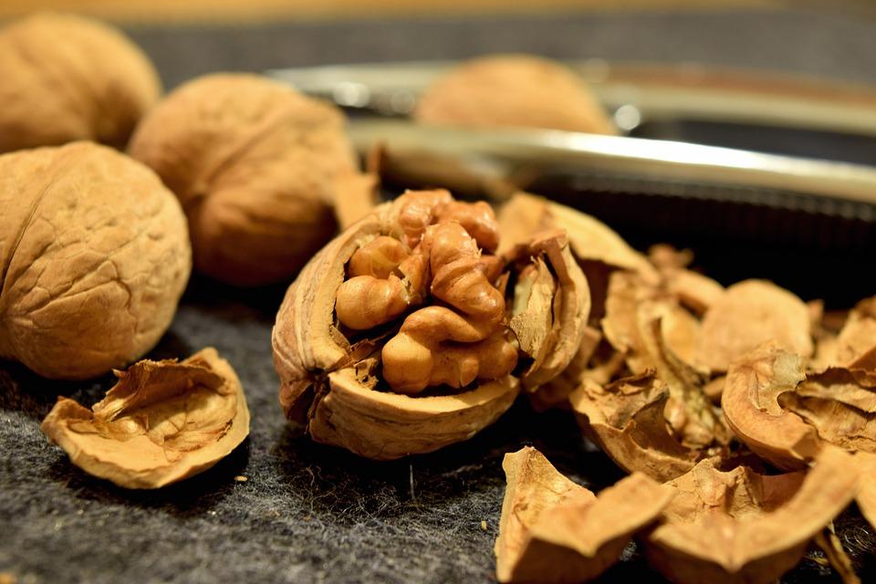 Для отримання більшого прибутку горіхівникам необхідно налагодити зберігання продукції